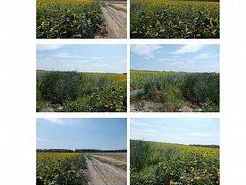 Licitaţie teren agricol, în Galaţi, zona Est