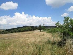 Licitaţie teren agricol, în Zalau, zona Sud