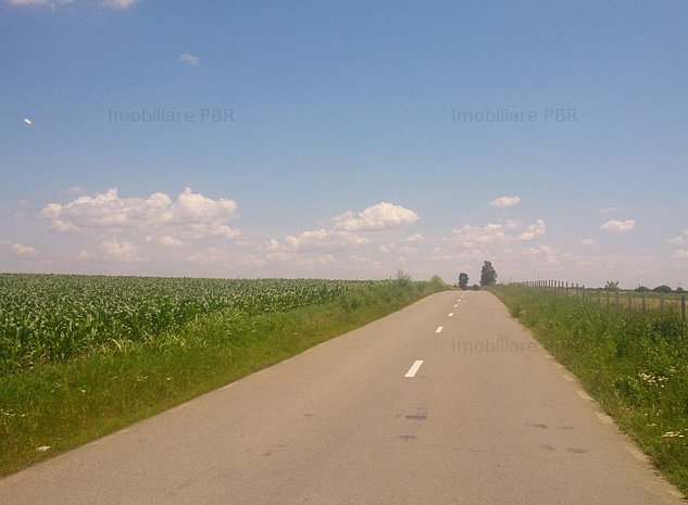 Terenuri agricole, 18000 mp - Balta Doamnei - imaginea 1