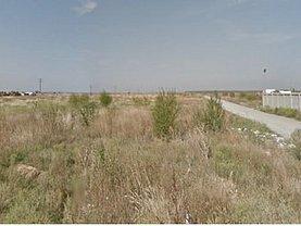 Licitaţie teren agricol, în Chitila