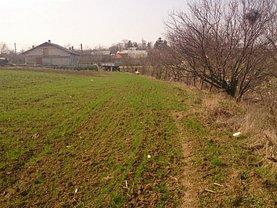 Licitaţie teren agricol, în Butimanu
