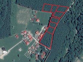 Licitaţie teren constructii, în Sinaia, zona Cumpătu