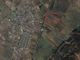 Licitaţie teren agricol, în Dârza