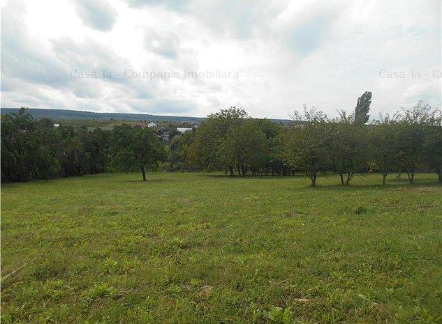 Parcele de teren de 800 mp intravilan Tomesti - imaginea 1