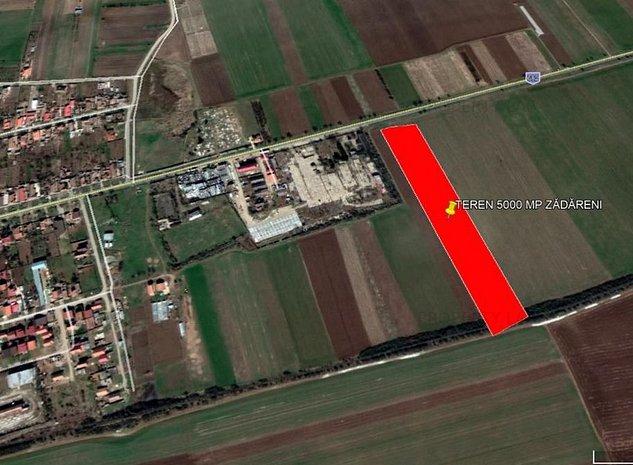 Teren 5000 mp Zadareni / DJ 682 - imaginea 1