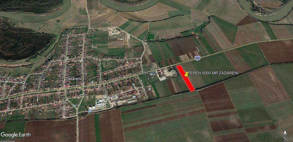 Teren 5000 mp Zadareni / DJ 682 - imaginea 2