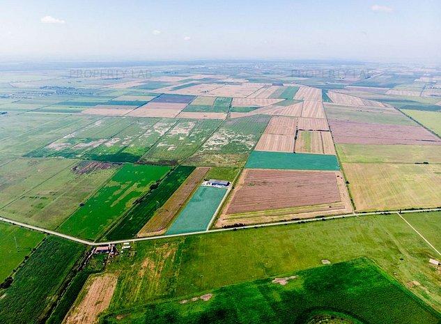 Teren in zona industriala Pecica 13,4 hectare. - imaginea 1
