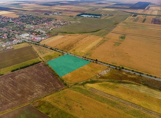 Teren de 19,798mp in Zimandu Nou. - imaginea 1