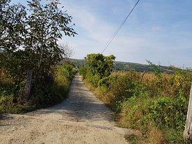 Licitaţie teren agricol, în Bogdanesti