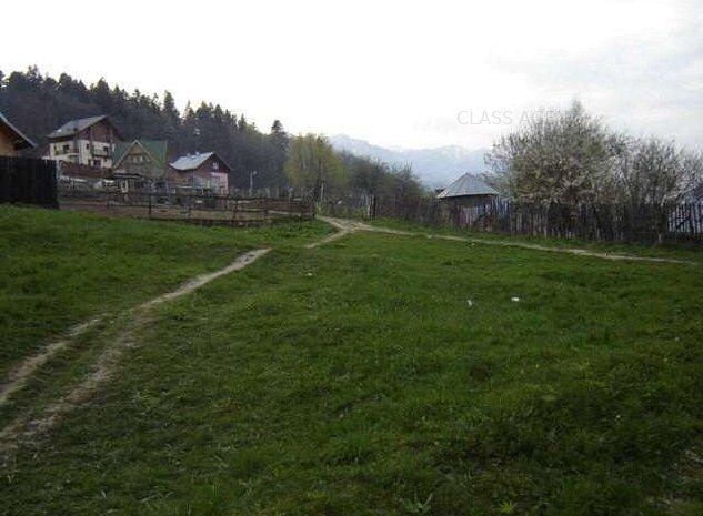 Teren Sinaia - imaginea 1