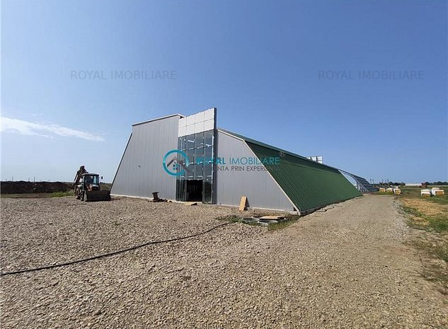 Royal Imobiliare - Vanzari Spatii industriale/ Hale - imaginea 1