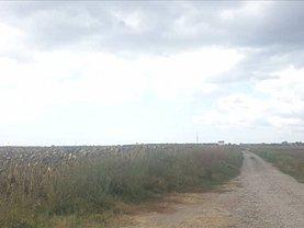 Teren agricol de vânzare, în Constanţa, zona Palas
