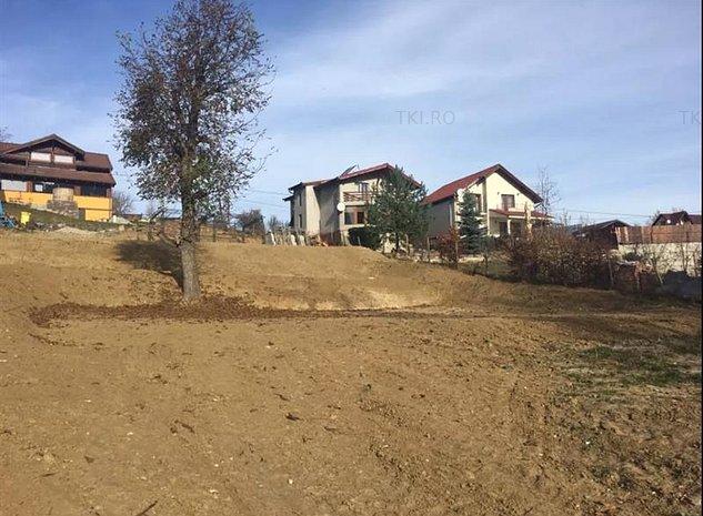 Teren intravilan de vanzare Cisnadioara zona Valea Argintului - imaginea 1