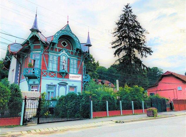 Pensiune de vanzare Ocna Sibiului - imaginea 1