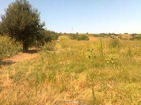 Teren agricol de vânzare, în Tulucesti