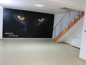 Casa 5 camere în Bucuresti, Mihai Bravu