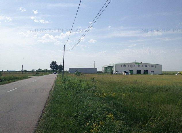 Teren extravilan/ S-10.000 mp/ Carcea/ T30, P38/ Zona Metro - imaginea 1