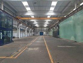 Vânzare spaţiu industrial în Buzau, Central