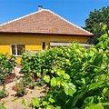 Casa de vânzare 4 camere, în Timişoara, zona Fabric