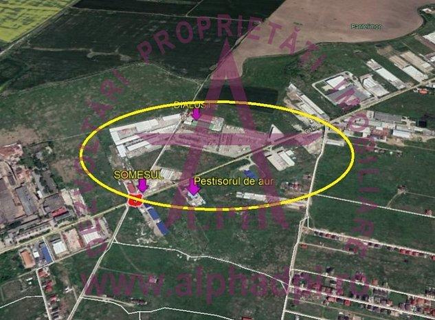Teren in suprafata de 5056 mp in zona Cernica - imaginea 1