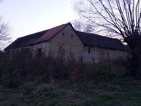 Casa de vânzare, în Paltinis