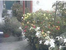 Casa de vânzare, în Cerna