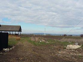 Licitaţie teren constructii, în Codlea