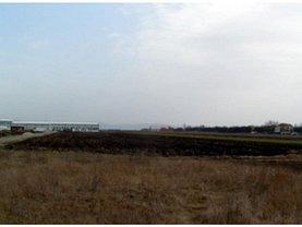 Licitaţie teren constructii, în Cicir