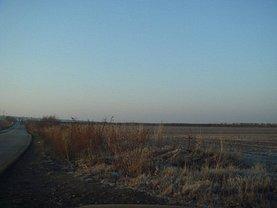 Licitaţie teren agricol, în Giarmata