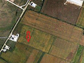 Licitaţie teren constructii, în Timisoara, zona Sagului