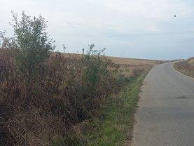 Licitaţie teren agricol, în Pielesti