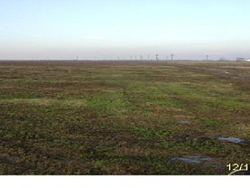 Licitaţie teren agricol, în Albota