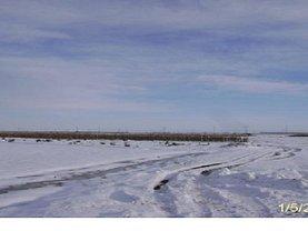 Licitaţie teren agricol, în Bradu