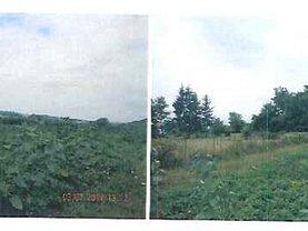 Licitaţie teren constructii, în Manastioara (Siret)