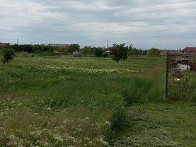 Licitaţie teren constructii, în Arad, zona Micalaca