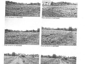 Licitaţie teren constructii, în Santana de Mures