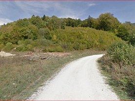Licitaţie teren pasune, în Rasnov, zona Cheile Rasnoavei