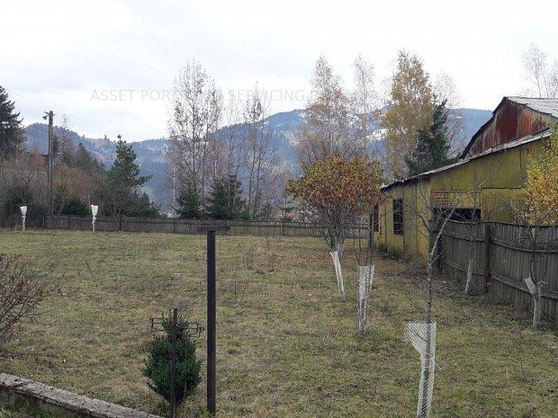 Teren intravilan 24.646 mp, Borsa, Maramures - imaginea 1