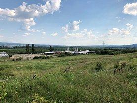 Licitaţie teren agricol, în Mihaesti