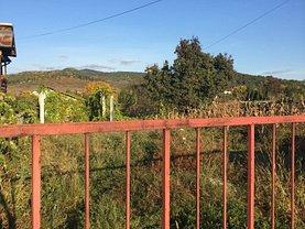 Licitaţie teren agricol, în Ramnicu Valcea, zona Lespezi (Sticlarie)