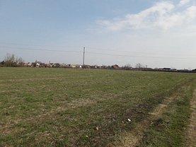 Licitaţie teren agricol, în Arad, zona Est
