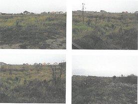 Licitaţie teren constructii, în Mosnita Noua