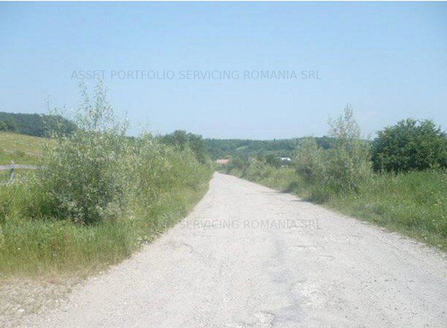 Teren extravilan, 23.200mp,  Bobalna,  judetul Cluj - imaginea 1