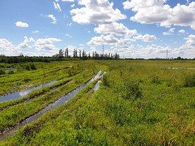 Licitaţie teren agricol, în Popesti-Leordeni
