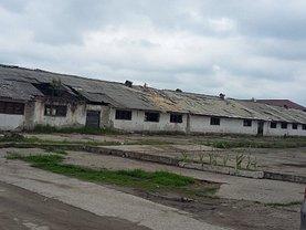 Vânzare spaţiu industrial în Targoviste, Micro 11