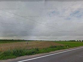Licitaţie teren agricol, în Braşov, zona Stupini