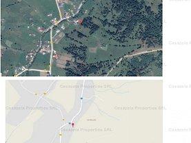 Licitaţie teren agricol, în Panaci