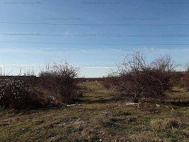 Licitaţie teren constructii, în Târgovişte, zona Central