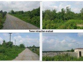 Licitaţie teren  agricol, în Crevedia, zona I.C. Brătianu