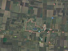 Teren agricol de vânzare, în Dragalina